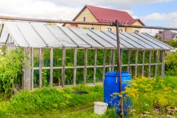 Old wooden greenhouse . Household. Growing and harvesting vegetables.