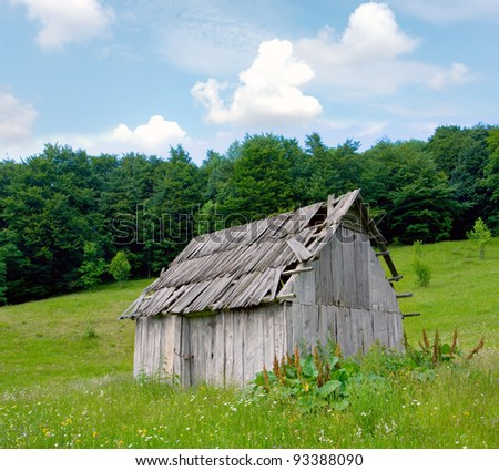 old wooden house in forest meadow