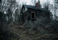 Old wooden house in the forest at cloudy dark day. Abandoned Haunted Horror House. Old mystic building in dead tree forest. Horror Halloween concept.