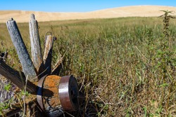 old wooden lichen covered wagon wheel weathered and rusted  on a grass and agricultural landscape