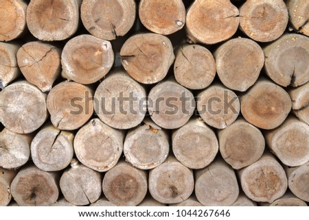 old wooden pattern background. Close-up group of cutting dry wood logs textured with soft lighting and selective focus #1044267646