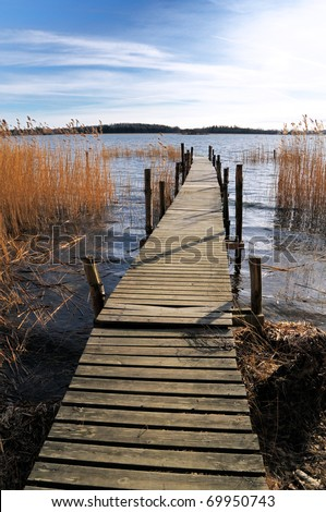Old wooden pier with orange reed and forest in background.