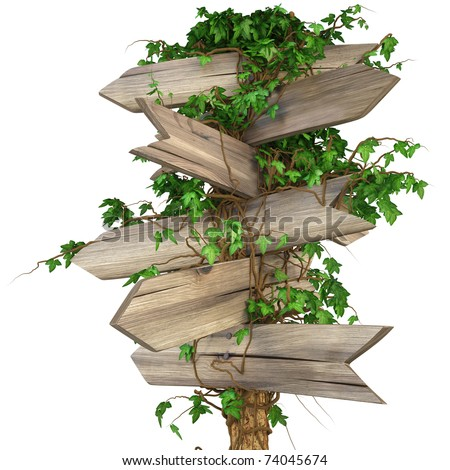 old wooden pointer overgrown in ivy. isolated on white. including clipping path