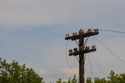Old wooden power line. The wires are cut, the power line is abandoned.
