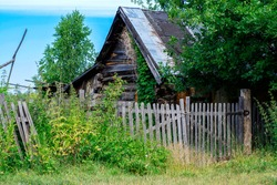 Old wooden ruined house against the background of a clear blue sky, entwined with ivy and overgrown with grass and nettles, horisontal photo