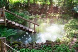 Old wooden stair to river pond near sauna in forest. Recreation and rest in beautiful places. Peaceful and harmony morning scene.