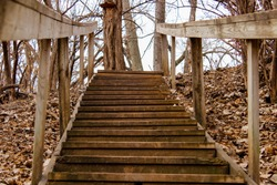 Old wooden stairs in the middle of woods surrounded by fallen leaves in autumn