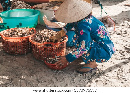 older vietnamese women with traditional hats sitting and sells fresh live crabs. fishing boats on sea near fishing village close to city Mui Ne, South Vietnam, Souteast Asia