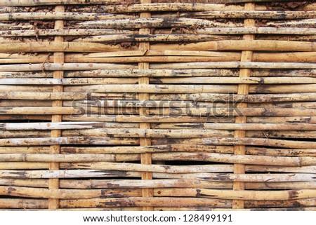 ole bamboo texture