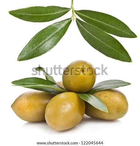 olive branch with olives close up macro shot isolated on a white background