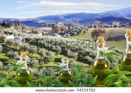 Olive oil bottles and olives, amid magnificent rural landscape