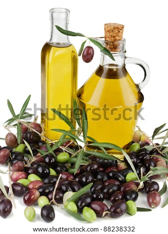 Olive oil, fresh olives with branches and leaves of an olive tree   over white background.