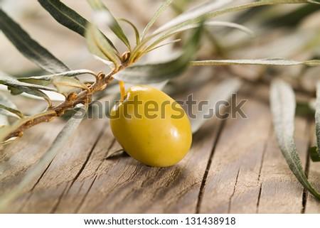 Olive over Wooden Background