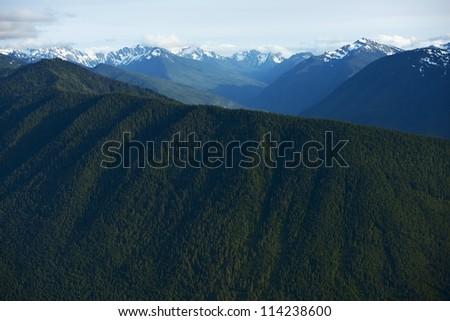 Olympic Mountains - Hurricane Ridge, Olympic National Park in Washington State, USA. Northwest Photo Collection.