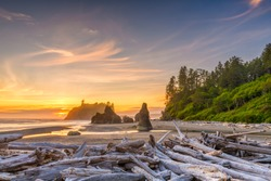 Olympic National Park, Washington, USA at Ruby Beach with piles of deadwood.