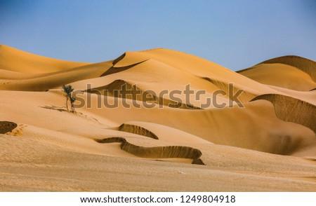 Oman desert Empty Quarter