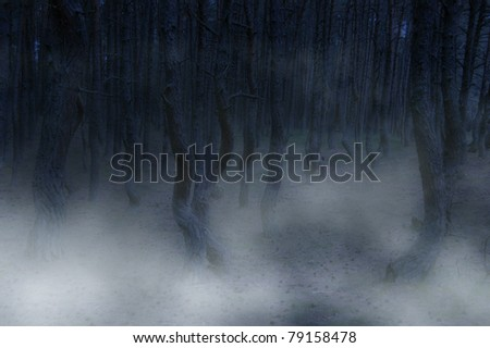 ominous forest - twisted trees and fog creating creepy landscape