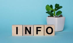 On a blue background, on wooden cubes near a plant in a pot INFO is written