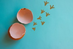 On a blue background there are two egg shells. Near painted traces of chicken. Break your shell, get out of the comfort zone, leave the familiar environment. The picture is made by the author.