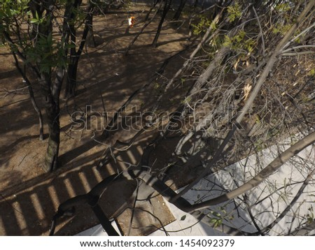 On a bridge in Periférico Sur, Adolfo López Mateos, CDMX, shots taken as scolar scouting before the earthquake of September 19, 2017, this bridge does not exist now, it suffered many damages after.