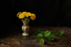 On a dark black and brown background, yellow dandelion flowers in a small beautiful antique stone light vase with a green branch with leaves lying next to it. Still-life.