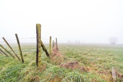 On a misty morning in the spring with a gate to a pasture
