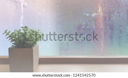 On a rainy day, see the water drops on the outside mirror blurred. (a rainy day window background)Place the flowerpot on the wooden floor on the left.