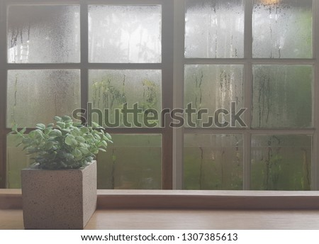 On a rainy day, see the water drops on the outside mirror blurred. (a rainy day window background) Place the flowerpot on the wooden floor on the left. Feelings, sadness, loneliness, nostalgia. #1307385613
