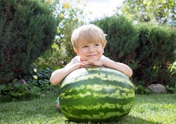 On a sunny summer day, a cute blonde toddler boy sits on his knees on the bright green grass near a large watermelon and smiles sweetly. Waiting for a delicious dessert