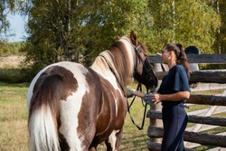 On a warm autumn morning, a rider washes her horse before riding through the field.