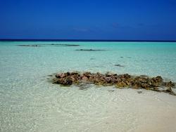 On beautiful deserted island in Maldives
