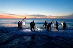On Jinluen beach by Pacific Ocean in Taimali, Taitung, Taiwan, diligent local people fishing fry in a traditional way with triangle nets in shallow seawater and headlamps in twilight before sunrise