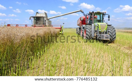 On rapeseed harvesting in the field