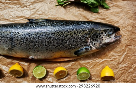 On showcase trendy fish restaurant is fresh salmon carcass from which it will be possible to cook any dish