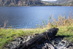 On the banks of the river in the forest lies the old charred wood.