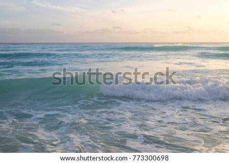 On the headband?\nThe beaches here are certainly excellent, there are almost no people, the water is like fresh milk ...\nOnly dead jellyfish are lying on the sand and the schools of fish are knocked do