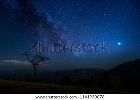 On the mountain in the night, there is a star shining in the darkness. #1141930076