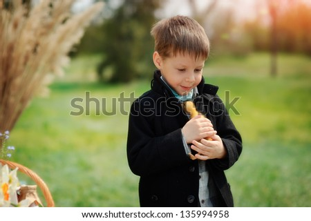 on the nature of the boy in a black coat plays with yellow duckling