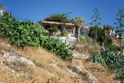On the Paleokastro hill at the walls of the ancient fortress of Fortezza in Rethymno (Crete, Greece) is this small house where ordinary people live. Many cacti, tall thorny trees