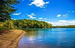 On the sandy shore of a forest lake. Forest lakeshore landscape. Lake shore landscape