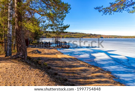 On the shore of a forest lake. Frozen lake shore. Frozen lake shore landscape. Forest lake frozen