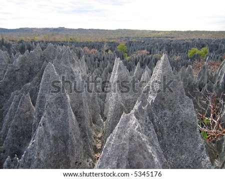 On the top - Tsingy of Bemaraha Park - Madagascar.
