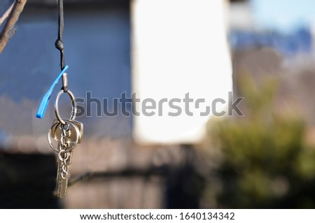 On the tree hangs a bunch of keys on the background of the house. Concept: purchase of personal housing, houses. Or loss of keys.
