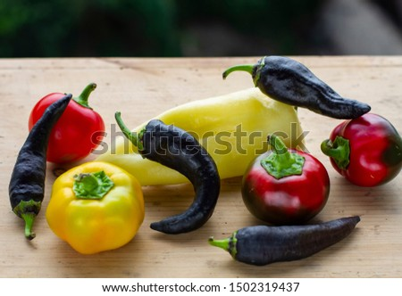 on wooden background a group of different varieties of pepper