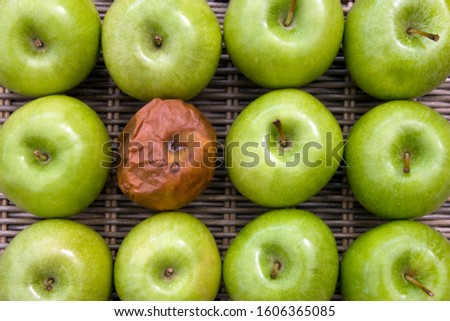 One bad apple - one rotten apple in a group of a dozen apples. Foto stock ©