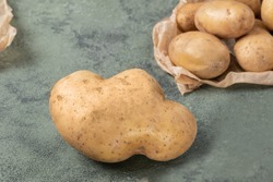 one big abnormal potato on the background of a ordinary potatoes. Funny potatoes on a dark green background