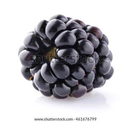 One blackberry in closeup