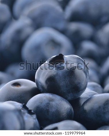 One blueberry standing out from a pile of blueberries