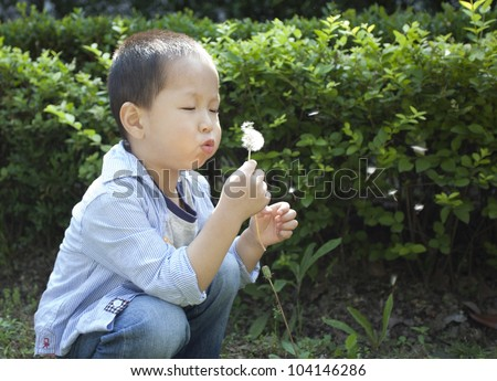 One chinese boy blowing dandelion in the garden