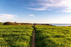 One distant woman walks in narrow footpath among fields with green wheat near the ocean in Conil de la Frontera, Spain.